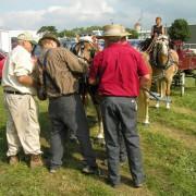 Haflingers-2009-002